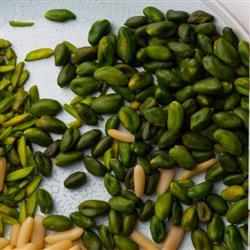 خرید خلال پسته سبز قزوین