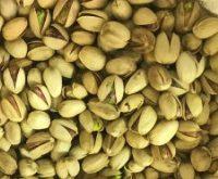 صادرات پسته ایرانی کله قوچی